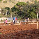primi lavori nell'orto